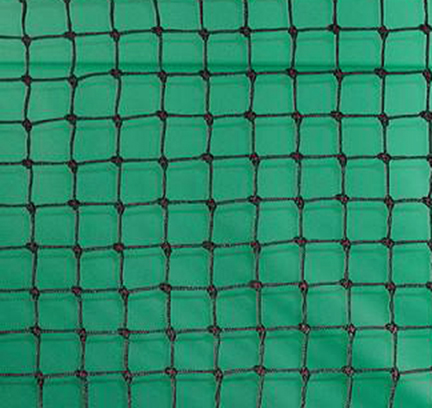 Edwards Pickleball/Paddle Tennis Net 30